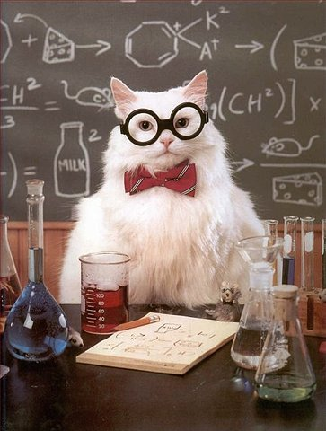 A white cat with glasses and a bowtie, standing at a desk with lab equipment.